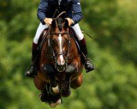 British-Jumping-Derby-Meeting-MGUbv_7MBcxl