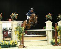 Ilton Vd Spithoeve Robert Smith Equestrian
